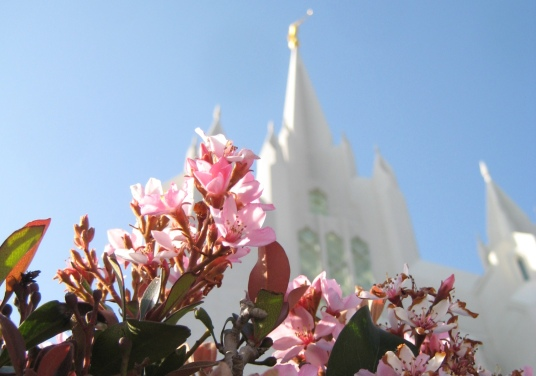 San Diego Temple, photo by Rickety